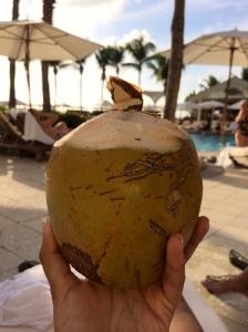 Coconuts poolside Photo Credit:  Evita Singh