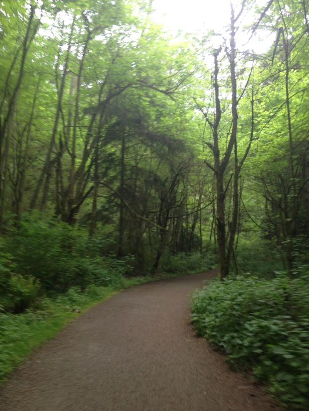 Discovery Park hike